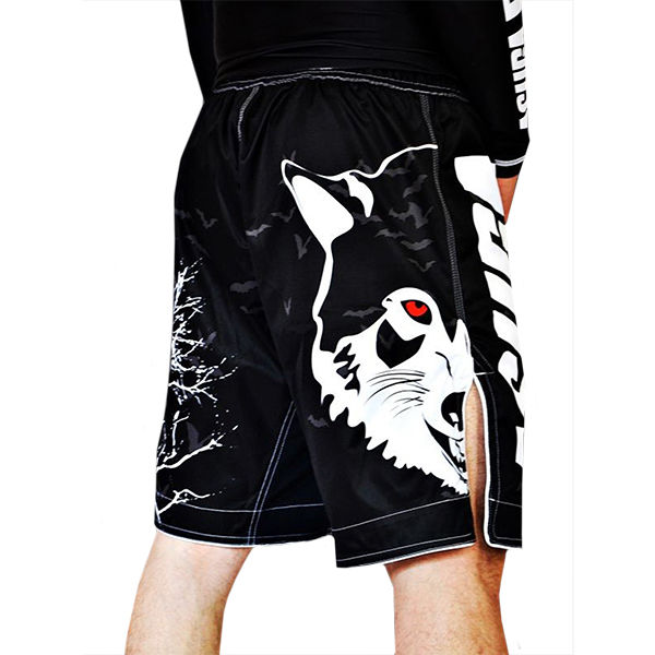 Шорты AsurA MMA Night Bats