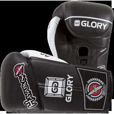 Купить Боксерские перчатки Hayabusa Glory V-Lace 10 oz (арт. 12999)