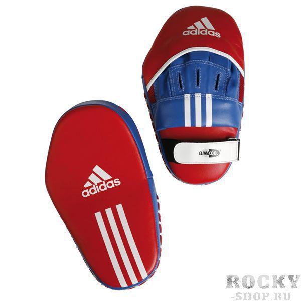 Купить Боксерские лапы Adidas красно-синие (арт. 480)