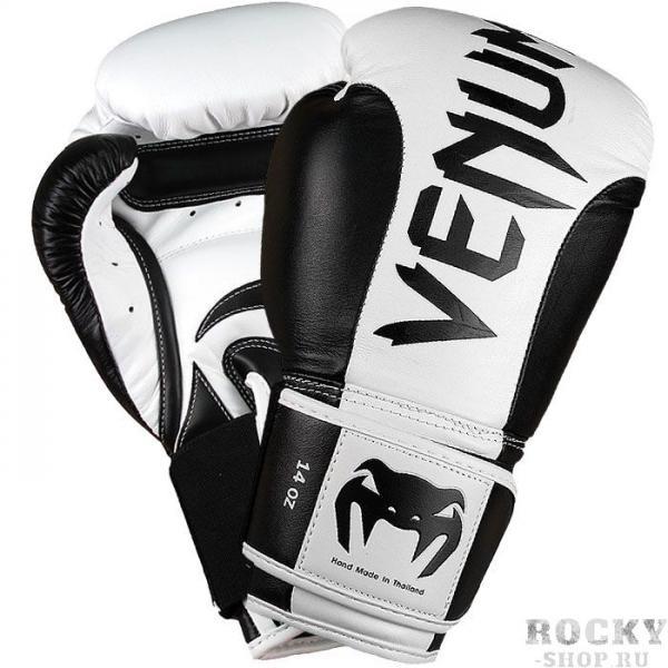 Купить Боксерские перчатки Venum Absolute 16 oz (арт. 6205)