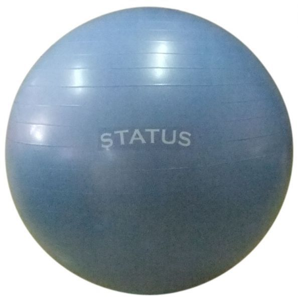 Гимнастический мяч с насосом FKA-30, 75 см STATUS (арт. 8497)  - купить со скидкой