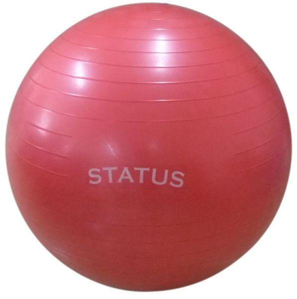 Гимнастический мяч с насосом FKA-26, 65 см STATUSГимнастические мячи<br>тренирует мышцы живота, спины, бедер и таза<br>     укрепляет мышечный корсет позвоночника<br>     гимнастика в период беременности, послеродовая гимнастика<br>     все виды силовой гимнастики<br>     занятия массажем с грудными детьми<br>