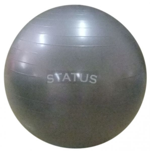 Купить Гимнастический мяч с насосом FKA-22, 55 см STATUS (арт. 8499)