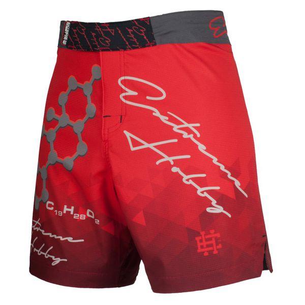 Спортивные шорты rapid (красный), красный Extreme Hobby