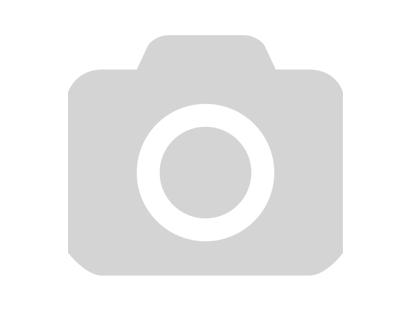 Защита голень-стопа IMMAF оранжевая Green Hill